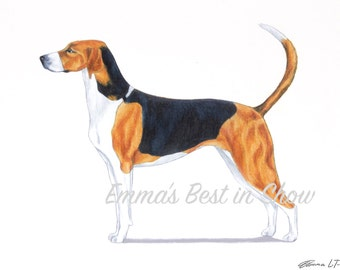 American Foxhound Dog - Archival Fine Art Print - AKC Best in Show Champion - Breed Standard - Hound Group - Original Art Print
