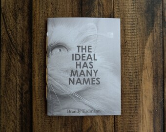 The Ideal Has Many Names- a Purrr-zine