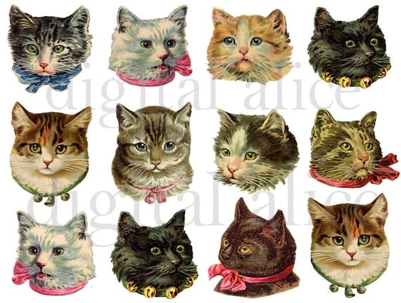 vintage victorian cats fluffy cute kitty cat heads instant