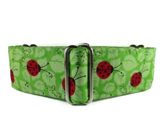 1.5 Inch Martingale Collars, Ladybug Martingale Collar, Greyhound Martingale, Lime Green Dog Collar, Preppy, Martingale Dog Collar