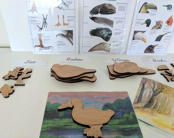 Bird lover gift - Build a bird wooden puzzle - montessori toys - Waldorf - Reggio inspired - homeschooling - Christmas gift - bird puzzle