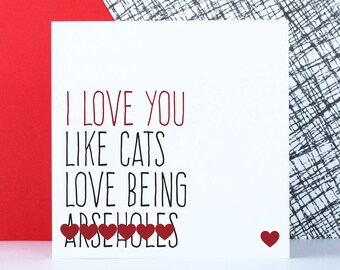 Funny cat Valentine's card for boyfriend, anniversary card, sweary cat birthday card, rude cat themed card, I love you like cats love be