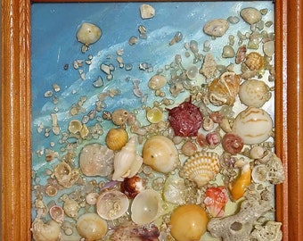 A natural picture of the sea shore from shells on the glass in a wooden frame