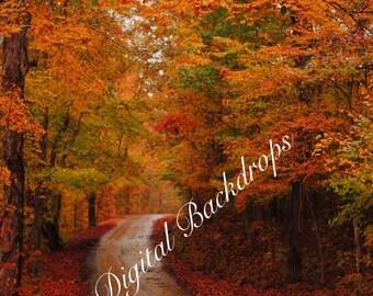 Fall Foilage Digital Backdrop