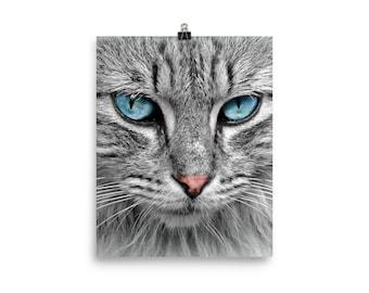 Snow cat print
