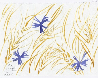 cornflowers in the rye, original watercolor nature drawing (free shipping)