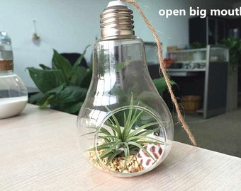 Bulb hanging terrarium//air plant planters //hanging succulent gardening//water planting hanging glass vase//house decoration