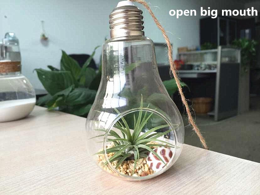 bulb hanging terrarium air plant planters hanging succulent. Black Bedroom Furniture Sets. Home Design Ideas