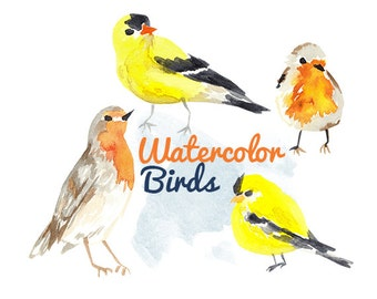 Watercolor Painted Bird Clip Art Birds Commercial use digital scrapbooking bird clipart instant download