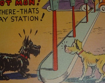 Vintage 1940s Comic Postcard With Black Scottish Terrier and Another Dog