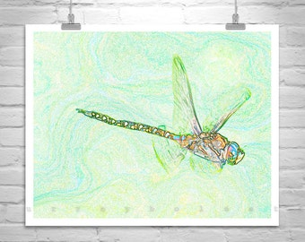 Dragonfly Art, Insect Print, Dragonfly Picture, Digital Art, Wall Art, Insect Photography, Bug Art, Green Art, Gallery Wrap, Picture Gift