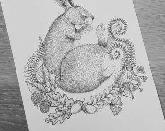 Hare Botanical Nature Illustration Print - A4
