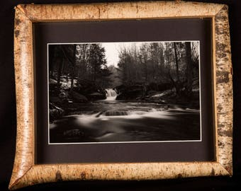 Ricketts Glen black and white landscape photograph