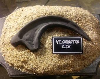 Velociraptor claw inspired by jurassic park