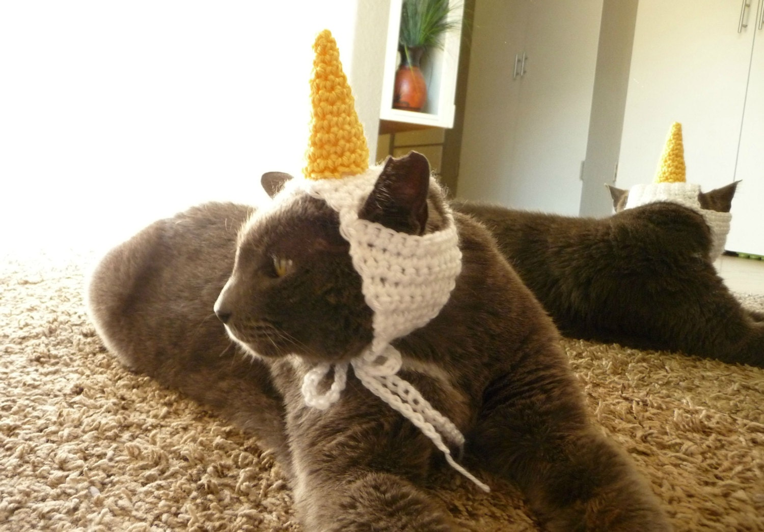 Cat hat crochet pattern cat costume for cat unicorn hat for zoom bankloansurffo Image collections