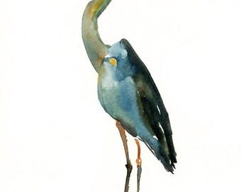 GREAT BLUE HERON 5x7 Print -Art Print-Bird Watercolor Print-Giclee Print-