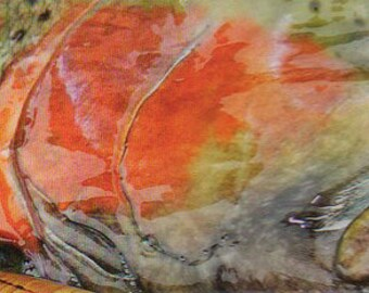 Signet - signet de pêche de la truite - signet - imperméable - plein air - lecture - pêche à la mouche - pêche à la mouche - rivière - flux de pêche à la mouche