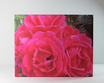 Canvas Print, Rose Photo, Flower Canvas Wrap, Canvas Art, Pink Roses Print, Country Photography