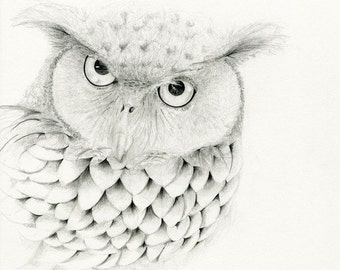 Owl Drawing Owl Art Print Fine Art Giclee Print of my Original Owl Pencil Drawing Black and White Home Decor Bird Decor for your Home Bird