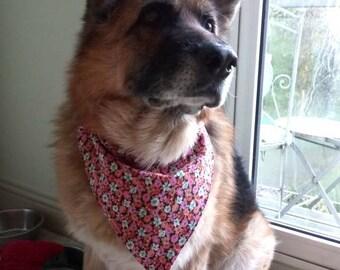 Dog Bandana over the collar style. Floral