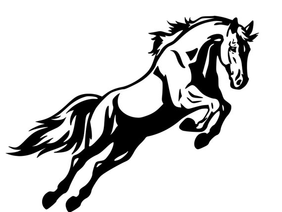 Horse trailer decal horse decal horse jumping sticker auto decal truck decal suv decal lg trailer decal 36 inches x 28 inches 255 hs