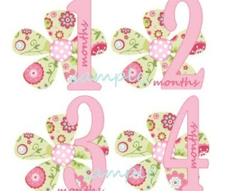 Baby  Girle Monthly Iron On  Transfers - Fresh Cute Flowers S1
