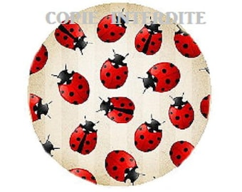 25mm cabochon ladybirds (small)
