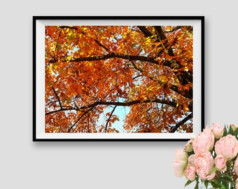 Autumn Print Fall Instant Download Autumn Poster Photography Fall Season Autumn Decor Photography Nature