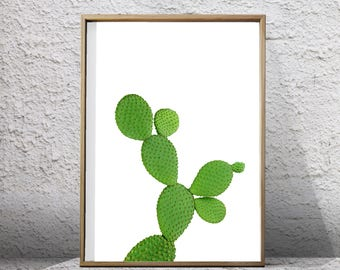 Opuntia Cactus Print Green Wall art Succulent Cacti Desert art print Boho Decor Botanical art Printable Poster Scandinavian art Tropical