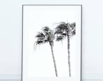 Scandinavian Inspired Print, Photo Print, Minimalist Print, Palm Tree Print, Tropical Print, Botanical Art, Print, Poster, Modern Art