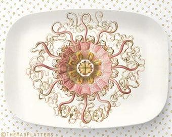 Sea Life III Ernst Haeckel Platter