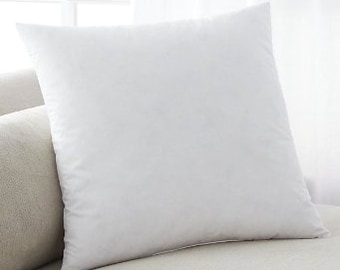 Pillow Insert Including additional Shipping