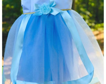 Blue Fairy Godmother Costume: green pink also available, Sleeping Beauty, tutu dress, cape, halloween costume, parks vacation, meet & greet