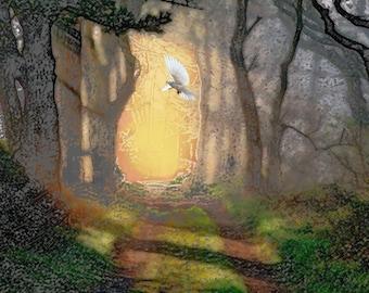 Forest, Path, Sunset, Scenery, Decor, Fine Art, Dove, Woodland, Imagination.