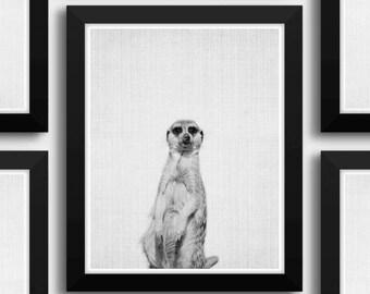 Meerkat Print, Meerkat Art, Animal Portrait, Meerkat Picture, Black And White Meerkat Art, Zoo Animals, Cute Wall Art, Meerkat Photography