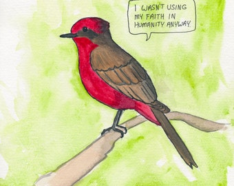 The Vermilion Flycatcher