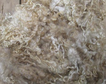 Raw Unwashed Teeswater Loose Fibre  Undyed  for Spinning and Crafts 200g (7 oz)