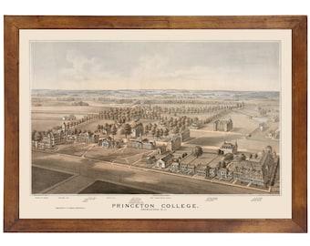 Princeton, NJ 1875 Bird's Eye View; 24x36 Print from a Vintage Lithograph