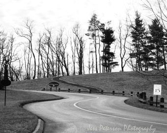 Biltmore Inn Photography, Asheville NC photos, Black & White Home Decor, tree landscape photography, Winter Tree Print. Modern wall art
