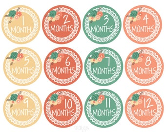 Monthly Baby Stickers Girl Stickers Baby Monthly Stickers Baby Girl Milestone Stickers Month Stickers Monthly Baby Stickers