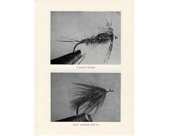 1970 FLY FISHING mayfly nymph & zulu hackled wet fly lure fly fishing lures plugs flies original vintage fish print