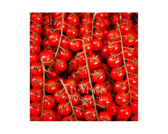 Red Tomatoes, French Market Photo, Kitchen Art, Summer Harvest, Food Photography, Gift for Chef Cook