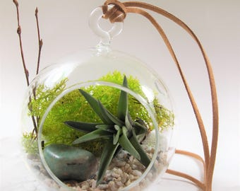 Amazonite Green Gemstone crystal air plant terrarium kit:unique gift; tillandsia; unique gift ;terrarium;office decor