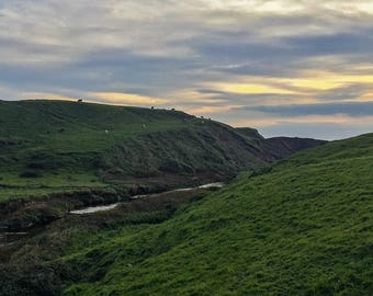 Irish Pasture, Ireland Photography, Pasture Photography, Landscape Photography, Travel Photography,  Irish Photography, Ireland landscape