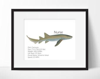 Nurse Shark Facts - Shark Decor - Nursery Print - Nursery Art - Classroom Art - Nurse Shark Print - Shark Print - Instant Download 8x10