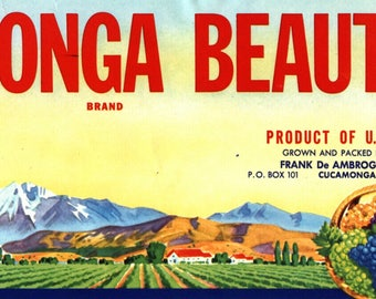 Original vintage grape crate label Cucamonga Beauty Scarce San Bernardino California