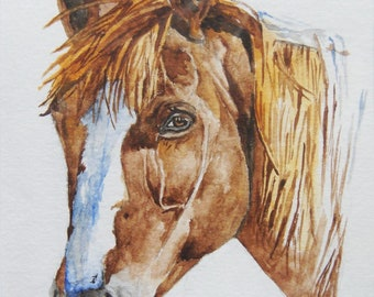Watercolor and Ink BAY HORSE