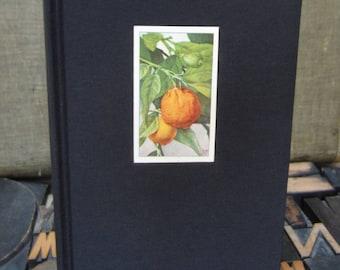 Orange Journal - Large Lined
