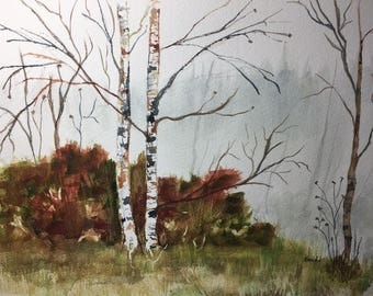 Birch trees landscape