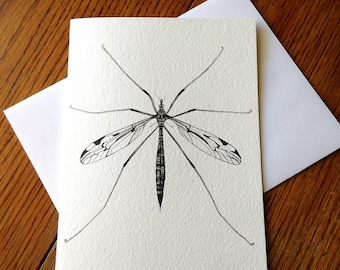 Crane Fly, Fly, Insect, 5 x 7 Black and White Illustrated Blank Card, Entomology